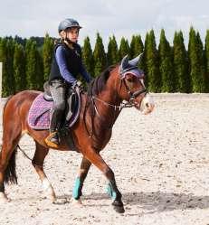 entrainement équitation.