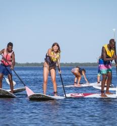 paddle-3216.