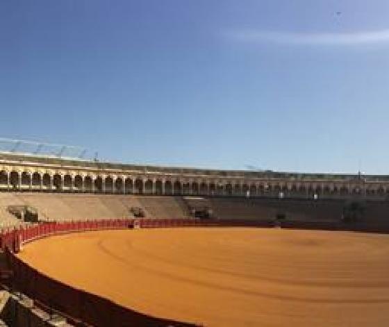 Plaza de Toros de la Real Maestranza - arènes de Séville par Camille Ferreira
