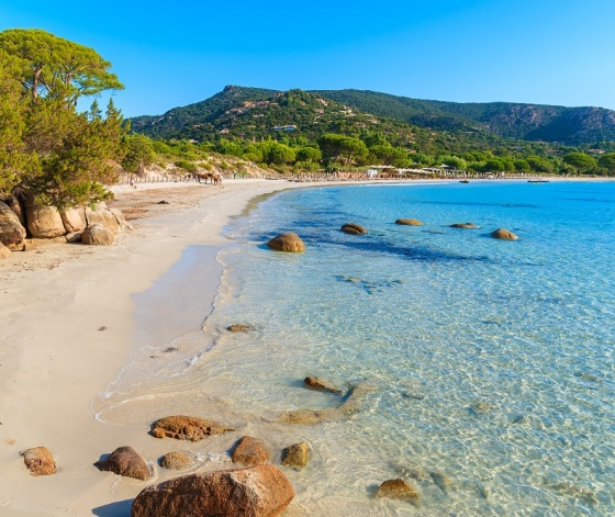Magnifique plage de Palombaggia près de Porto Vecchio en Corse