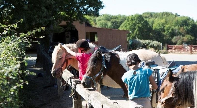equitation-chambon.