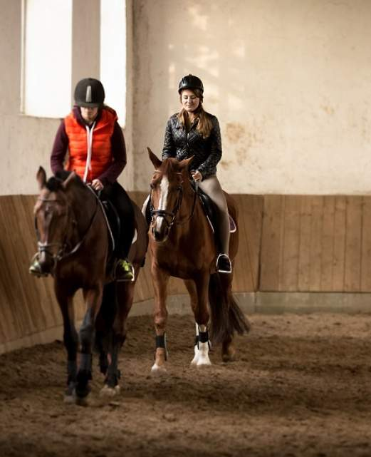stage-equitation-manege.